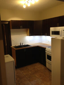 Bright & new 1 bedroom main floor suite available now.