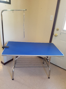 Folding Dog Grooming Table with Arm
