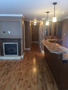 BEAUTIFUL NEWLY RENOVATED HOME IN MT. PEARL