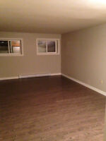 Renovated basement apartment available immediately