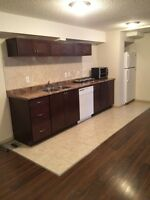 Fully Renovated inner City Basement suite for rent!!