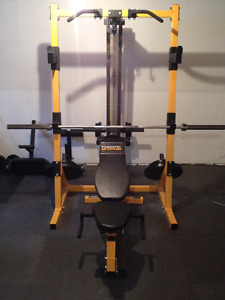 powertec home gym
