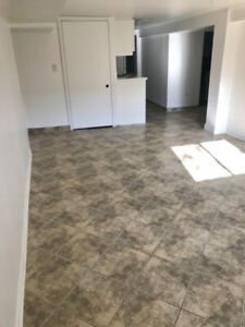 Newly Renovated Bright 1 Bedroom Basement Apartment