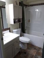 Bathroom, kitchen renovation, handyman works