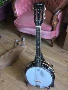 Banjo Guitare  Aria
