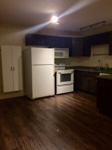N. Nanaimo - Large, clean, and bright 2 bed ground level suite