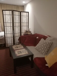 Sublease (wonderful apartment with amazing view)