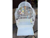 Bird cage SWAP