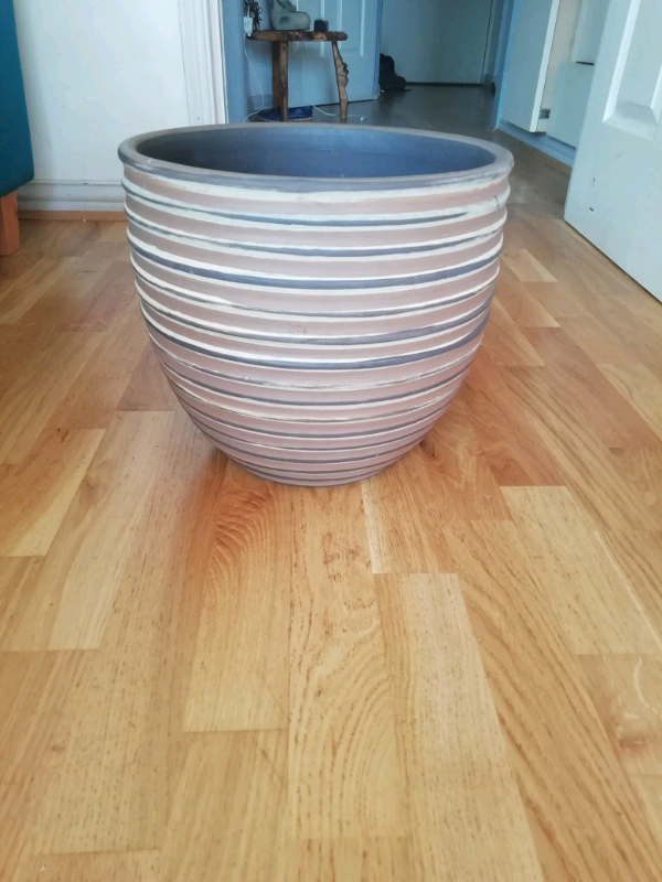 Beautiful large indoor plant pot | in Norwich, Norfolk ...