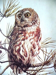"Hand Signed and Numbered Lithograph by Peter Miehm ""Owl"" 1980 Stratford Kitchener Area image 4"