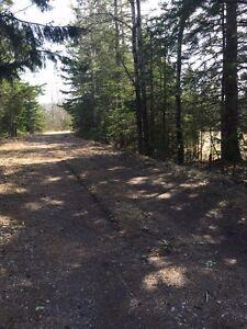 Private 5.5 acre building lot just outside town Limits - Hampton