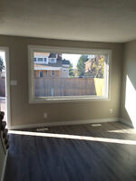 Newly renovated 2 BR townhouses now renting!! ONLY 2 UNITS LEFT!