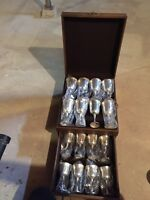 Salem silver plated designer wine glass collection