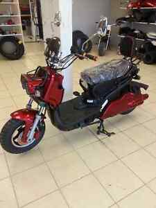 E-Scooters, # 1 In Service & Warranty, THUNDER WORLD