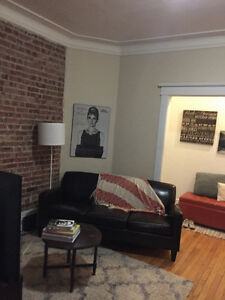 Fabulous Two Bedroom Downtown Apartment