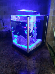 3G table top tank