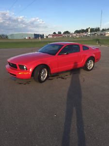 2007 Ford Mustang V6 Coupe (2 door)