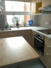 Lovely double room for rent 7 days or M-F from Aug