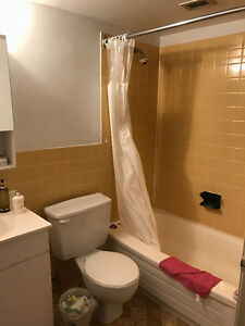 1263 Queen Street Bachelor for sublet