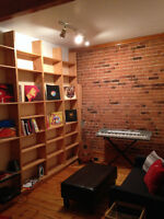 4.5 Apartment in the Plateau-Rooommate Wanted!