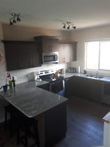 New Duplex in Spruce Grove  for rent
