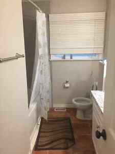 Perfect Student Rental House Located Close to Western London Ontario image 7