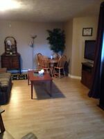 Furnished Basement Room (evergreen area)