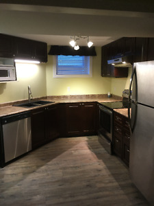 Private Basement Suite - new kitchen!