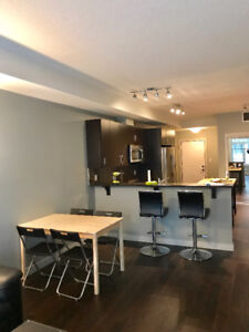 University/Whyte Ave luxury 2bed 2bath condo for rent