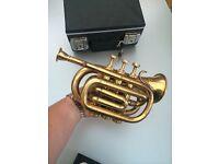 Pocket cornet