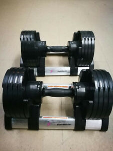 Stairmaster Adjustable dumbbells