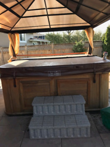 Arctic Spa Hot Tub For Sale (needs repairs)