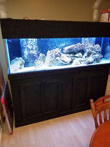 125 Gallon Reef ready tank with Stand