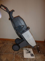 Regina Steemer Ultra Carpet Cleaner