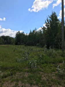 Land for Sale, Hondo, Alberta