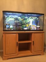 Tank with Storage Cabinet
