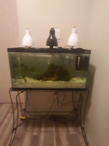 25 Gallon with Stand