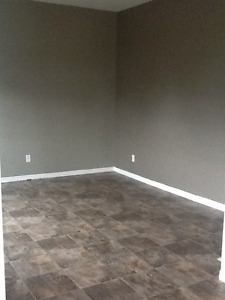 Amherst, 3 bdrm , bright and sunny 2 level apartment with yard