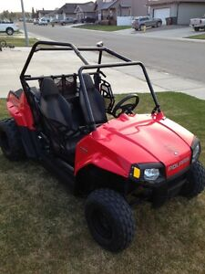 Mini RZR, priced to sell-REDUCED
