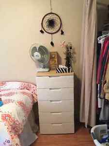 Winter - Summer Sublet 1 room available January - August Kitchener / Waterloo Kitchener Area image 8