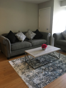 Sofa and Loveseat + 6 Cushions for sale. It used just 4 months!