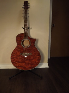 Ibanez Babinga Exotic Woods Acoustic Electric Guitar