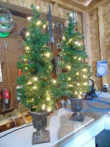 Christmas Trees'