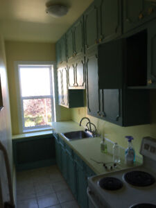 Newly Renovated One Bedroom Suite - Free Jan Rent!!