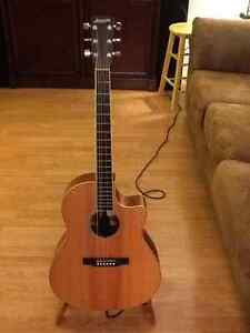 Larrivee acoustic guitar (Reduced)