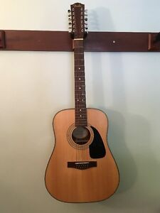 Fender 12 String Acoustic DG 10/12 Nat