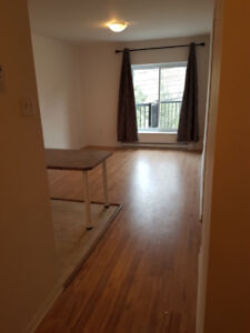 Cozy 1 1/2 FOR RENT