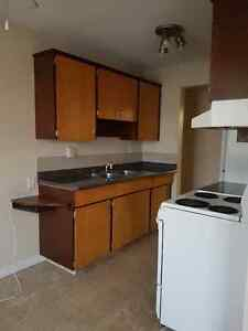 December FREE For Rent 1bd Apts in the Whyte ave area !!!