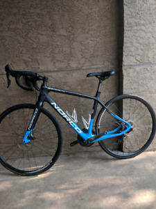 Carbon Norco Search Ultegra