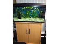 JUWEL FISH TANK AND STAND - FULL SET UP
